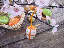 与花的复活节彩蛋在木背景 图库摄影