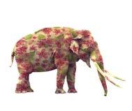 与花的大象 免版税图库摄影