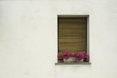 与花的威尼斯式窗口 图库摄影