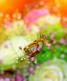 与花的婚戒 免版税图库摄影
