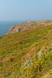 与花的峭壁和在Frehel海角的老塔  britte 免版税图库摄影