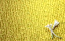 与花的布料 免版税库存照片