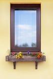 与花的布朗窗口在垂悬的花盆 免版税库存照片