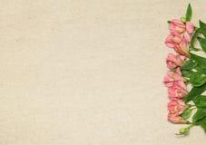与花的平的被放置的框架在米黄花岗岩背景 免版税库存照片