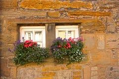 与花的微小的苏格兰视窗 库存照片