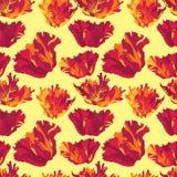 与花的无缝的纹理 库存图片