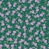 与花的无缝的背景 免版税库存照片