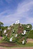 与花的时钟设计在公园 免版税库存照片