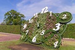 与花的时钟设计在公园 图库摄影