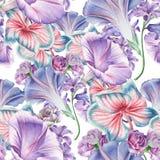 与花的明亮的无缝的样式 兰花 喇叭花 额嘴装饰飞行例证图象其纸部分燕子水彩 免版税库存图片
