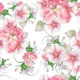 与花的明亮的无缝的样式 罗斯 喇叭花 开花 额嘴装饰飞行例证图象其纸部分燕子水彩 免版税库存照片