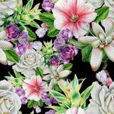 与花的明亮的无缝的样式 罗斯 花揪 多汁植物 额嘴装饰飞行例证图象其纸部分燕子水彩 免版税库存图片