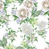与花的明亮的无缝的样式 罗斯 Bromeliad 额嘴装饰飞行例证图象其纸部分燕子水彩 库存照片