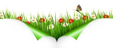 与花的春天背景 库存图片