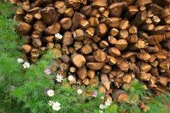 与花的木柴 免版税库存图片