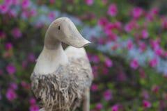 与花的木鸭子 库存照片