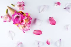 与花的构成的奶蛋烘饼锥体 免版税图库摄影