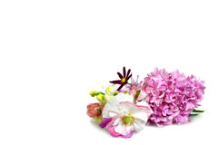 与花的母亲节背景在白色 免版税库存照片