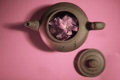 与花的水壶 库存照片
