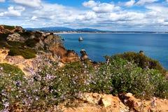 与花的海岸线阿尔加威在春天 葡萄牙,在拉各斯附近 免版税库存照片