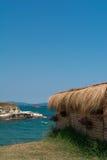 与花的海滩酒吧 库存照片