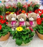 与花的玩具熊 免版税库存图片