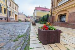 与花的石床在城市街道上 库存照片