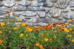 与花的石背景 免版税库存照片