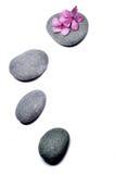 与花的禅宗石头 免版税库存照片