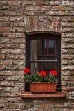与花的窗口在欧洲。布鲁日(布鲁基),比利时 免版税图库摄影
