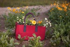 与花的红色篮子在领域 免版税图库摄影