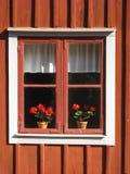 与花的美丽如画的窗口。林雪平。瑞典 库存照片