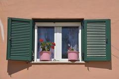 与花的美丽的五颜六色的窗口在科孚岛海岛,希腊 库存照片