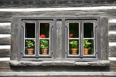 与花的老木窗口 免版税图库摄影