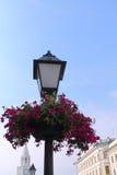 与花的老灯笼 免版税库存图片
