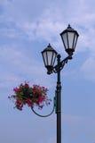与花的老灯笼 免版税库存照片