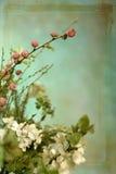 与花的背景 免版税库存照片