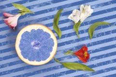 与花的蓝色葡萄柚在一张镶边背景顶视图 免版税库存图片