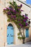 与花的蓝色门在马耳他 图库摄影
