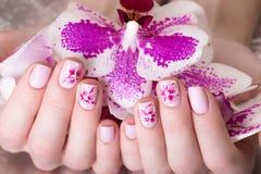 与花的被射击的美好的修指甲在女性手指 钉子设计 特写镜头 库存照片