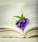 与花的被打开的书作为书签 库存图片