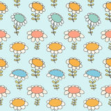 与花的装饰花卉无缝的样式Camomiles纹理雏菊光背景 免版税图库摄影