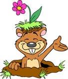 与花的逗人喜爱的地鼠 图库摄影