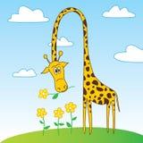 与花的逗人喜爱的滑稽的长颈鹿漫画人物 免版税库存照片
