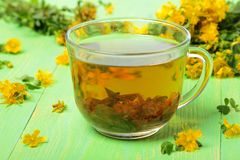 与花的金丝桃属植物茶 库存图片