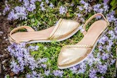 与花的金黄妇女凉鞋,给鞋子做广告 库存图片