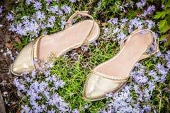 与花的金黄妇女凉鞋,给鞋子做广告 图库摄影