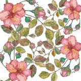 与花的水彩摘要 皇族释放例证