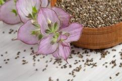 与花的Chia种子健康超级食物 库存图片