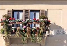 与花的Windows,广场Navona,罗马,意大利 免版税库存图片